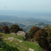 Near Magic View Cafe, Triund