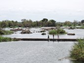 Kaveri river bank