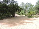 En-route Vydyanatheshwara Temple