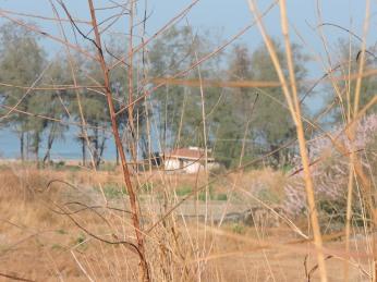 En-route Someshwara beach
