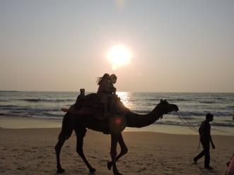 Panambur beach, sunset, part 2